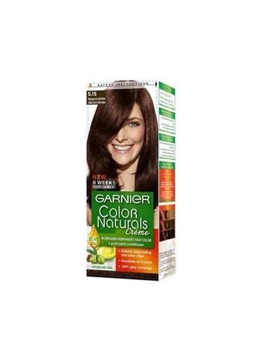 Garnier Garnıer Color Naturals Saç Boyası 5.15 Kışkırtıcı Kahve Delist Kahve